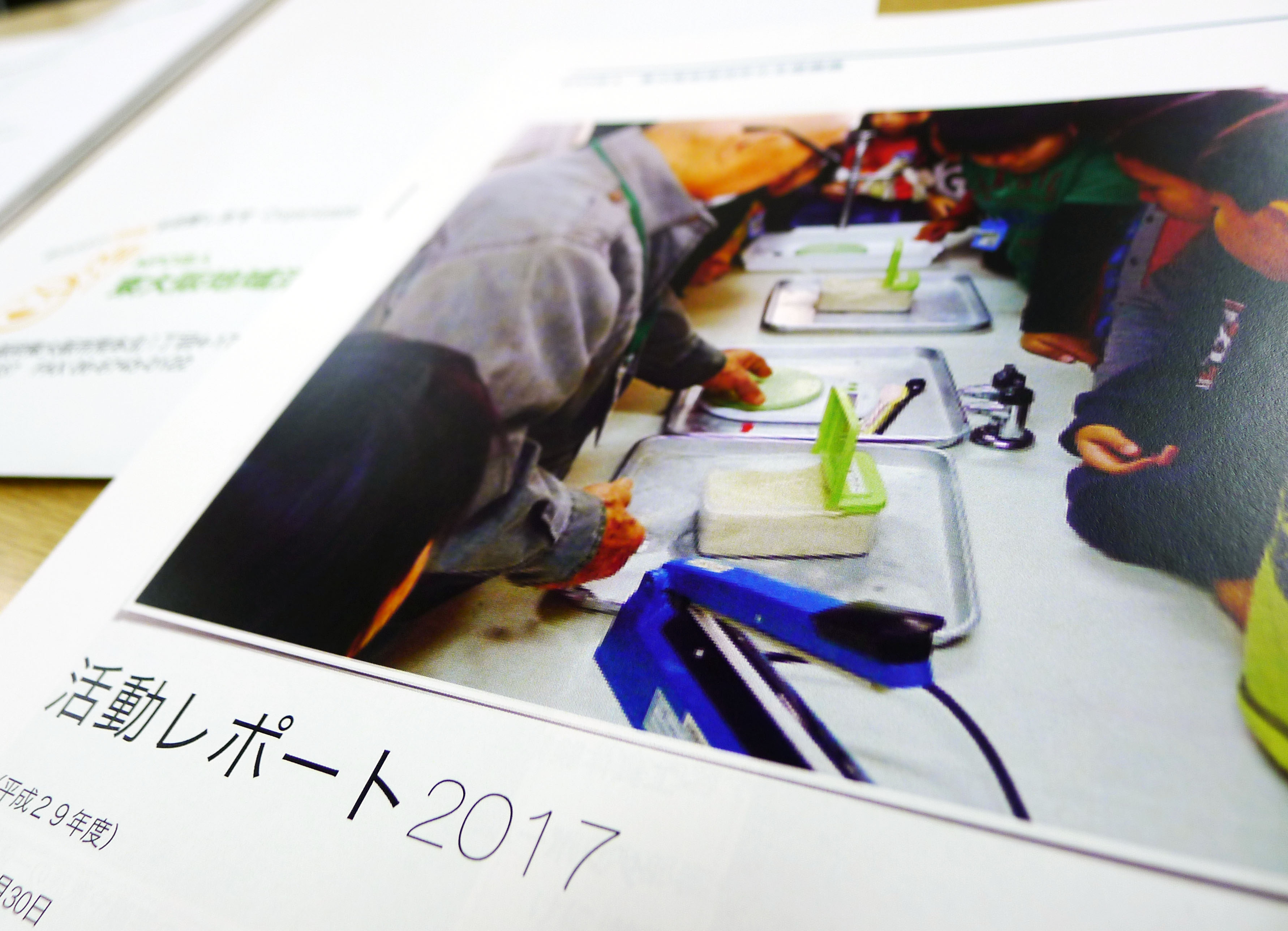 平成29年度 活動報告レポート